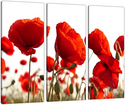Set Of Three Red Poppy Canvas Prints Pictures Wall Art Poppies 3056 Amazon Co Uk Kitchen Home
