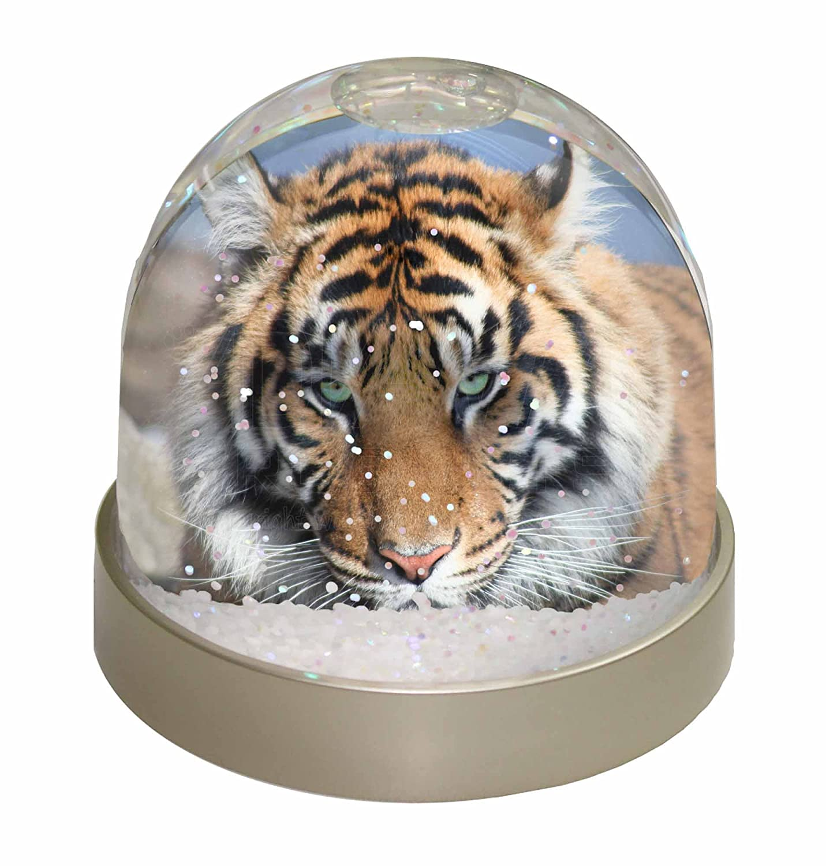 Advanta Bengal Tiger Photo Snow Globe Waterball Stocking Filler Gift, Multi-Colour, 9.2 x 9.2 x 8 cm Advanta Products AT-15GL