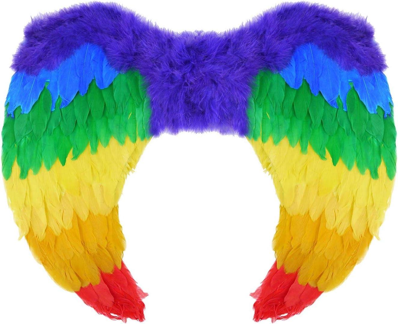 Alas De Hadas Arco Iris Orgullo LGBT