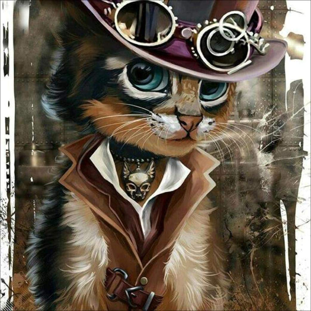 DIY 5D pittura diamante, Saihui dipinti a mano rotonda diamante ricamo strass cross-stitch Art Craft set – cowboy Cat 30 * 30cm