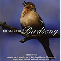 The Sound Of Birdsong