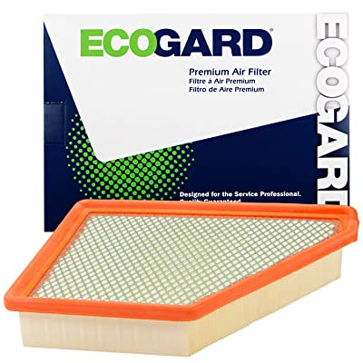 Ecogard XA6131 Premium Engine Air Filter Fits Chevrolet, Equinox 3.0L 2010-2012 | GMC 2.4L 2010-2020, Terrain 3.6L 2013-2020: Automotive