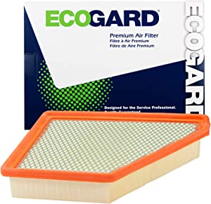 Ecogard XA6131 Premium Engine Air Filter Fits Chevrolet, Equinox 3.0L 2010-2012 | GMC 2.4L 2010-2017, Terrain 3.6L 2013-2017