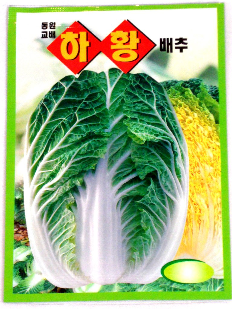Cabbge Seeds Korean. 2 Pack(4grams-each)