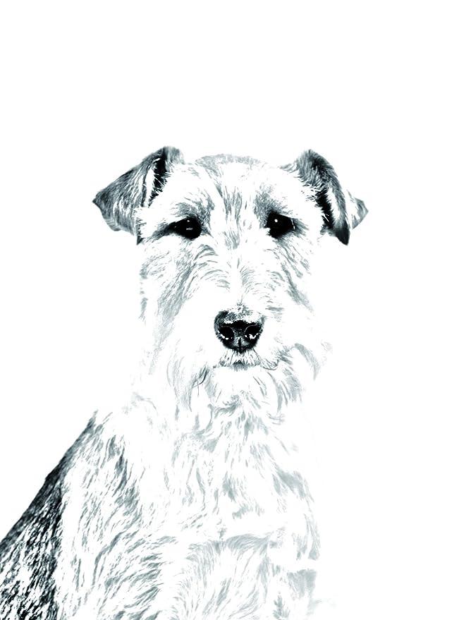 Foxterrier ArtDog Ltd Oval Grabstein aus Keramikfliesen mit Einem Bild eines Hundes