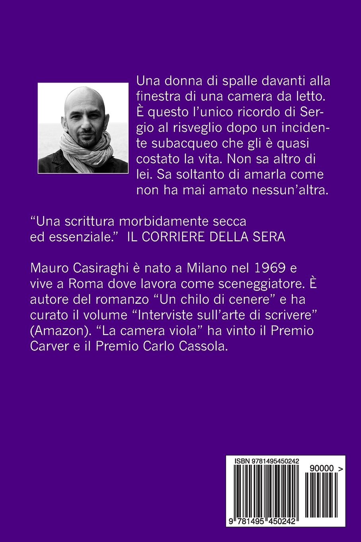 Interviste sullarte di scrivere (Italian Edition)