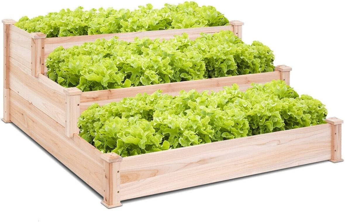 blessing2220 Raised Garden Bed Kit, Wooden Elevated Planter Box Stand for Growing Herbs, Vegetables, Greens, Strawberries, Flowers, and Much More 49 x 49 x 22