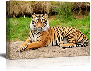 Picture Poster Print Art A0 A1 A2 A3 A4 BENGAL TIGER 3755 Animal Poster