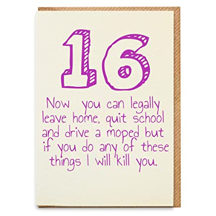 Magnificent Greeting Cards Funny 16Th Birthday Card Cheeky Zebra Cards Personalised Birthday Cards Paralily Jamesorg