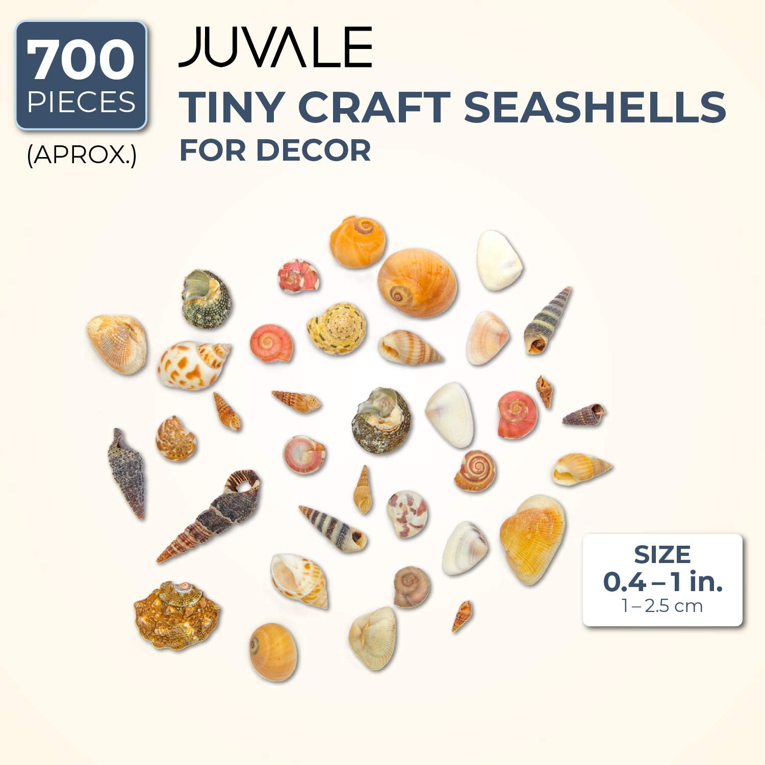 Juvale Tiny Craft Spiral Seashells for DIY Crafts Home Decor 0.4-1 Inches, 180 Grams