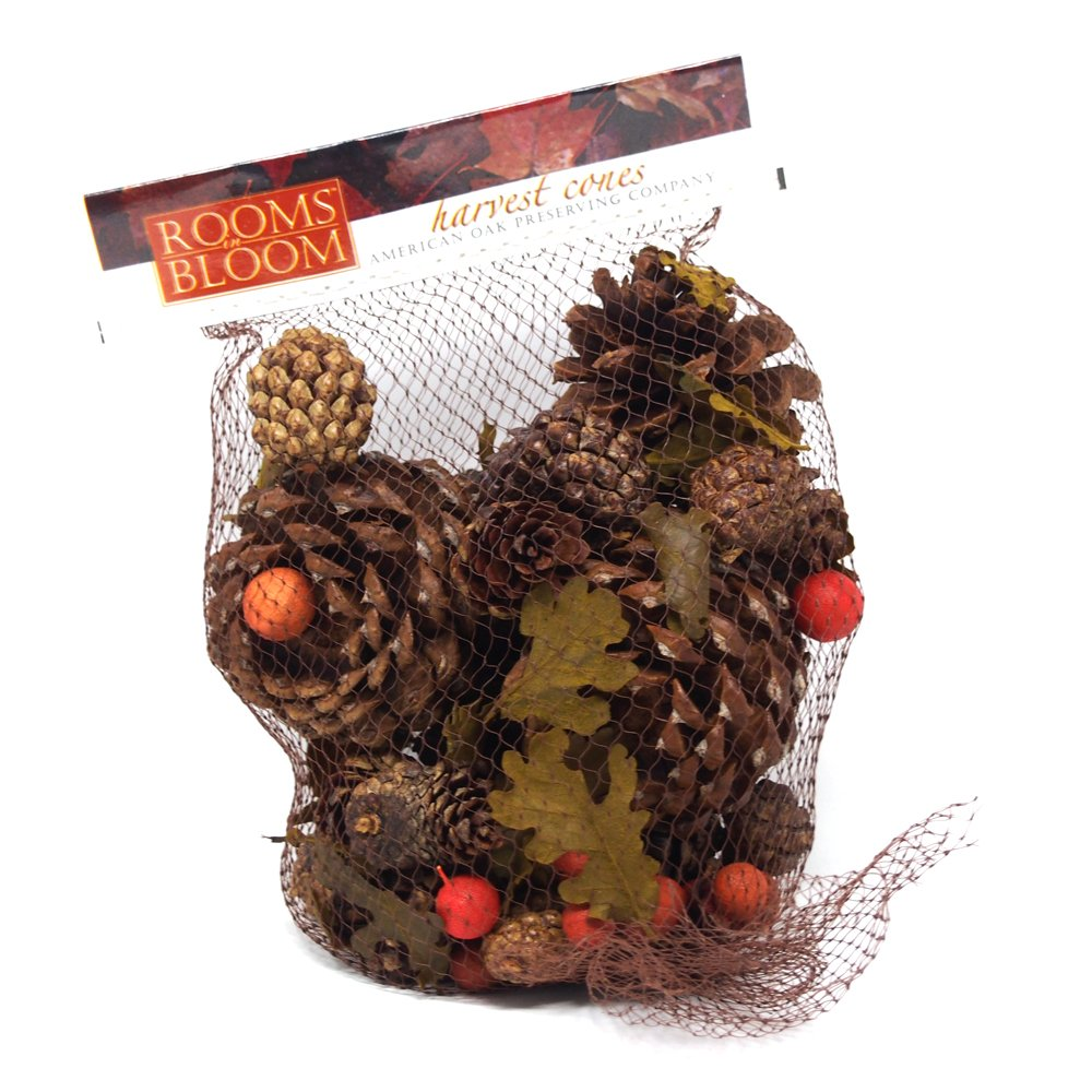 Homeford Dried Scented Pine Cones Natural Forms with Red Berries, 40-Piece by Homeford (Image #2)