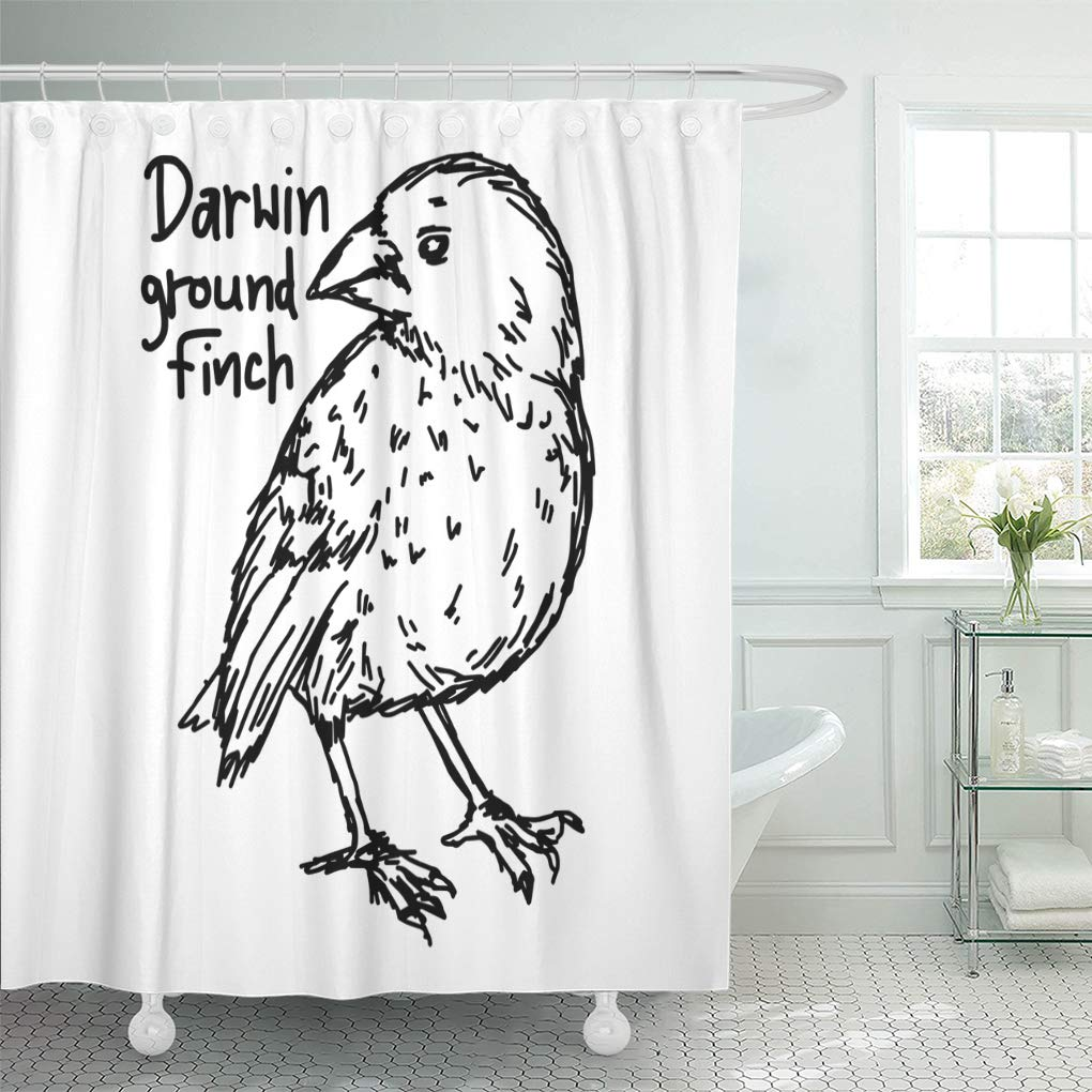 Emvency Shower Curtain Charles Darwin Ground Finch Sketch with Black Lines White America Shower Curtains Sets with Hooks 60 x 72 Inches Waterproof Polyester Fabric