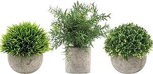 Velener Mini Plastic Fake Green Grass of Plants with Pots for Home Decor (Set of 3)