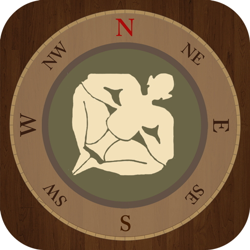 Cheap  Vastu Compass: check if your home is in harmony with the laws..