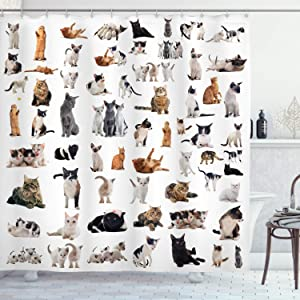 Ambesonne Cat Lover Shower Curtain, Group of Cats and Kitten Lying Down Meowing Purebred Norwegian Siamese, Cloth Fabric Bathroom Decor Set with Hooks, 70
