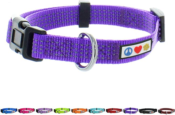 Pawtitas Reflective Collar with Stitching Reflective Thread