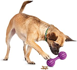 PetSafe Busy Buddy Waggle Treat Dispensing Dog Toy – Small, Medium/Large, BB-WAG-S, Purple