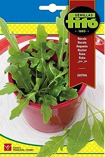 Semillas Fitó 8073 - Semillas de Rúcula Sativa
