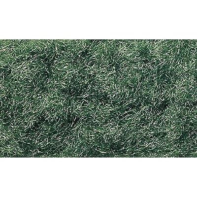 Woodland Scenics FL636 Static Grass Flock Dark Green 32 oz WOOU1310: Toys & Games