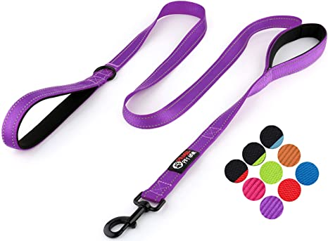 Double Handles Lead for Control Safety Training Primal Pet Gear Dog Leash 6ft Long Leashes for Large Dogs or Medium Dogs Traffic Padded Two Handle Heavy Duty