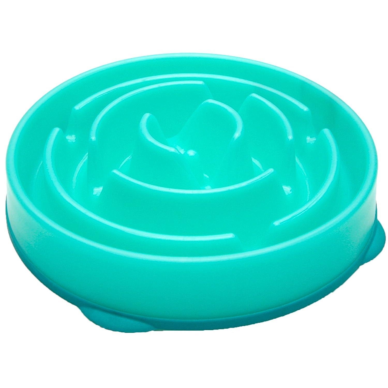 Best-dog-bowls