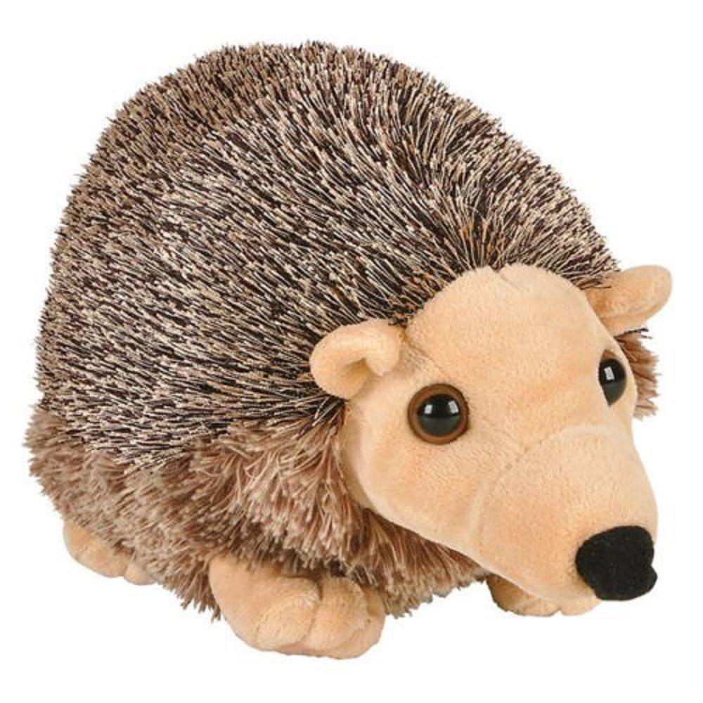 Amazon Com Cute Baby Hedgehog 8 Inch Stuffed Animal Toys Games