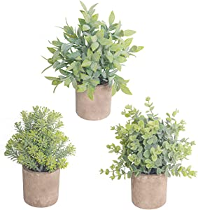 THE BLOOM TIMES Set of 3 Small Fake Plants Plastic Rustic Faux Potted Greenery Eucalyptus Boxwood Artificial Plants in Pots for Home Office Desk Farmhouse Bathroom Kitchen Shelf Indoor Decor