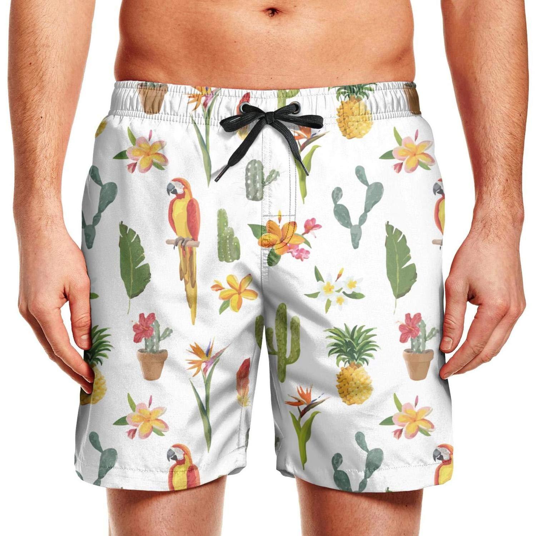 Mens Beach Shorts Tropical Background Parrot Bird Cactus Quick Dry Swim Drawstring Waist Board Shorts