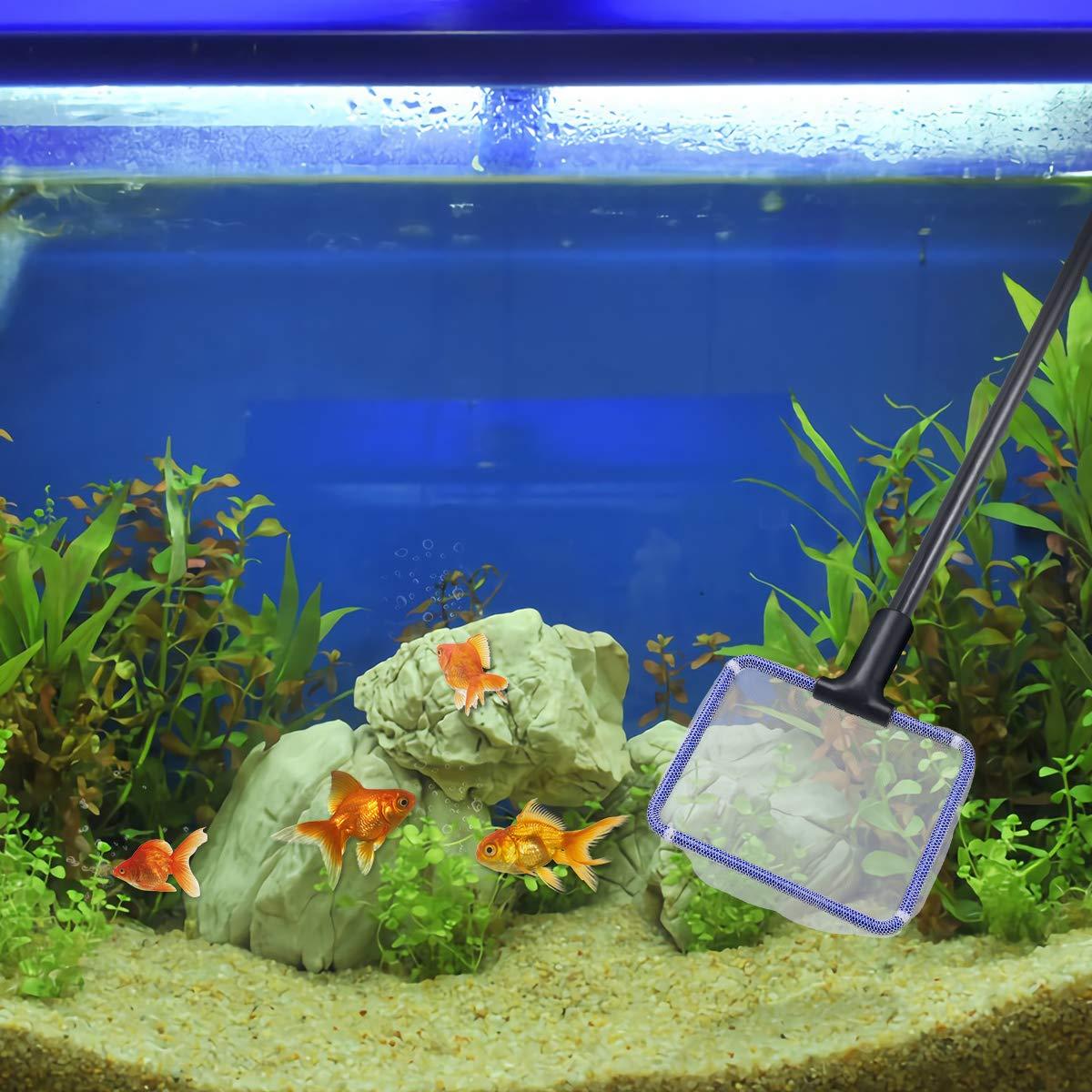 NUOLUX Acuario Depósito de cristal 5 en 1 kit de limpieza Grava Rake Algas Herramienta de limpieza: Amazon.es: Productos para mascotas