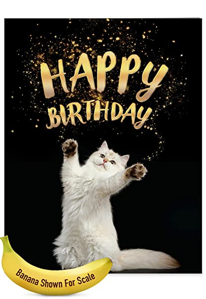 J6112ABDG Jumbo Birthday Card Cat Sent Greetings Featuring Images Of Fluffy Felines Extending