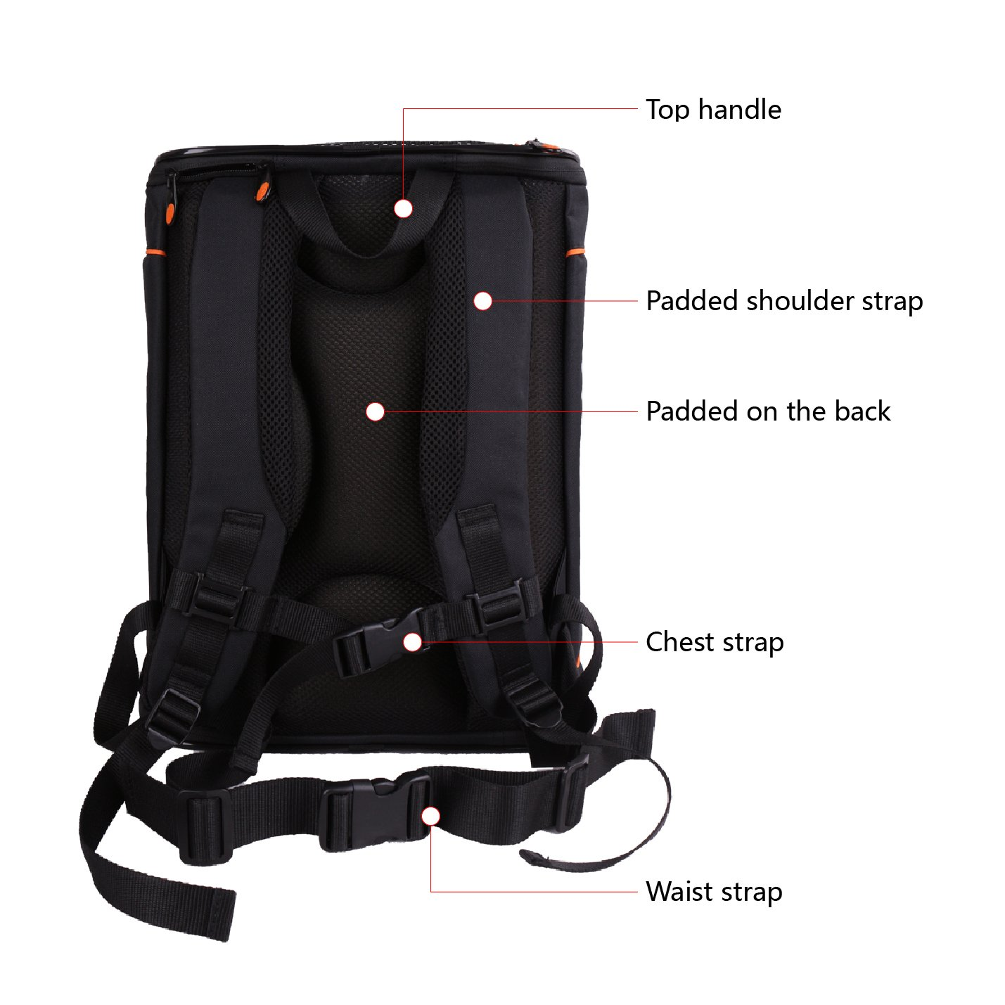 Petsfit 43cmx32cmx29cm Comfort Dogs Carriers Backpack,Hold Pets Up To 15 Pounds