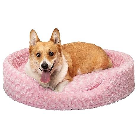 Amazon.com: Cama ovalada para perro o gato Furhaven, XL ...