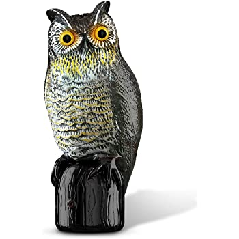 Charmant Premium Bird Repellent Fake Owl Decoy For Garden 16 In. Tall U2013 Motion  Activated U0026