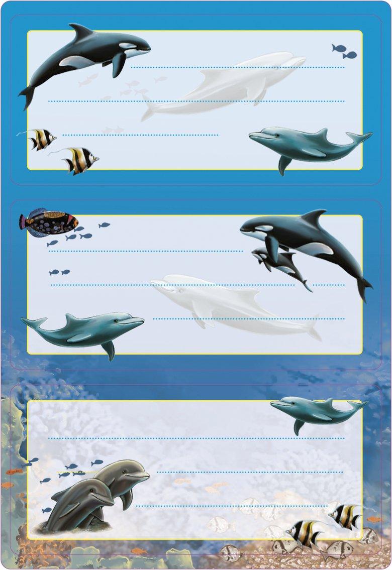 HERMA 5579Etichette Nome Quaderno per la scuola, motivo: delfini, formato 7,6x 3,5cm, con brillantini, contenuto confezione: 6Etichette