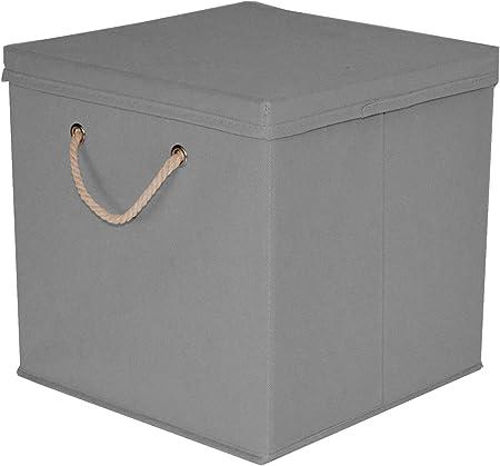 Caja de almacenaje, 30 x 30 x 30 cm, con tapa, gris claro, 1 unidad: Amazon.es: Hogar