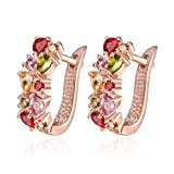 Amazon Price History for:18K White Gold Plated Cubic Zirconia Flower Hoop Earrings for Women Girls Small Hoop Earrings Stud Fashion Earrings