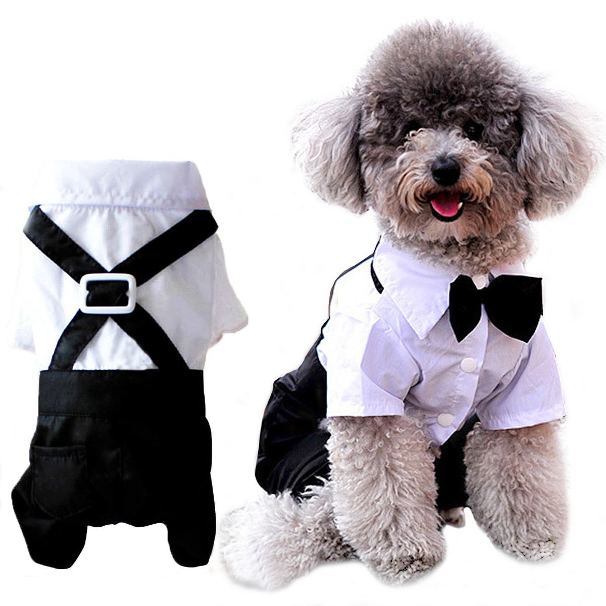 ANSIMITE bow tie is Mecha cute dog cat clothes tuxedo tailcoat black ribbon small and medium large size variety there you black (M)