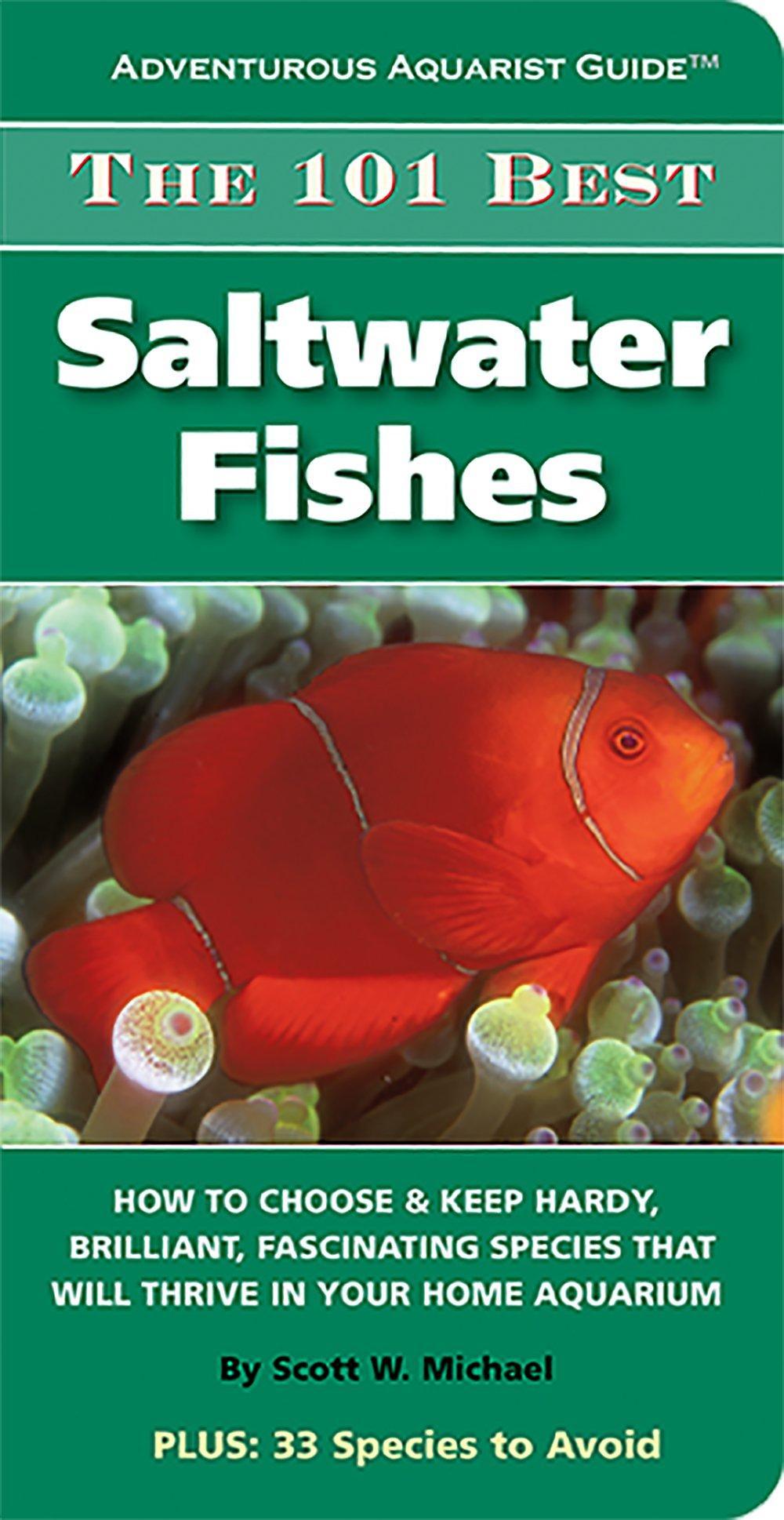 The 101 Best Saltwater Fishes (Adventurous Aquarist Guide)