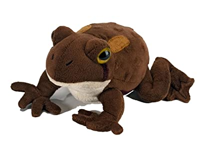 Amazon.com: American Toad With Sound Soft Toy: Toys & Games