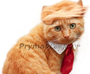 Trump Cat/Dog Costume for Halloween, Parties and Pictures