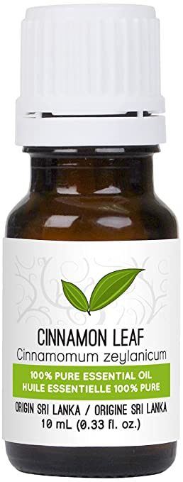 Cinnamon Leaf Essential Oil 10 ml (0.33 fl. Oz.) - GCMS Tested, 100% Pure, Undiluted and Therapeutic Grade