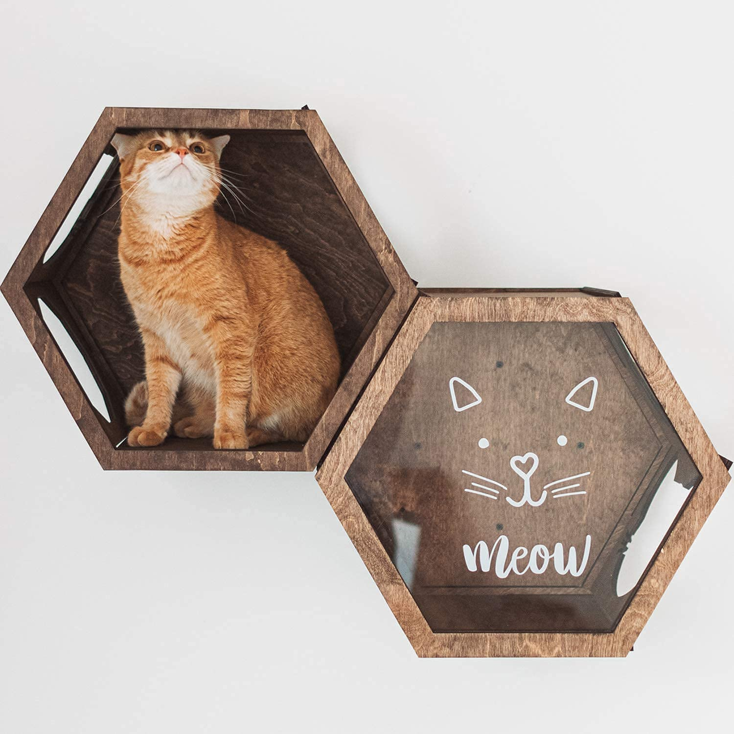 Cat Shelf Bed Pine Wood Cat Wall Furniture Wall Mounted Cat Shelf 18 Cat Perch Cat Lounger Pet Kitty Bed catwallfurniture made to order