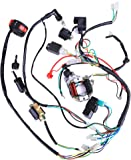 71EisqGetJL._AC_UL160_SR160160_ amazon com 3 5l 50 70 90 110cc wire harness wiring cdi assembly kazuma meerkat 50cc wiring diagram at crackthecode.co