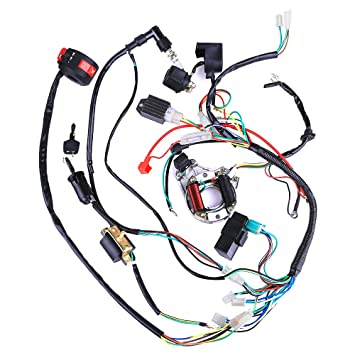 71EisqGetJL._SY355_ amazon com complete electrics coil cdi wiring harness atv klx 110cc wiring harness at bayanpartner.co