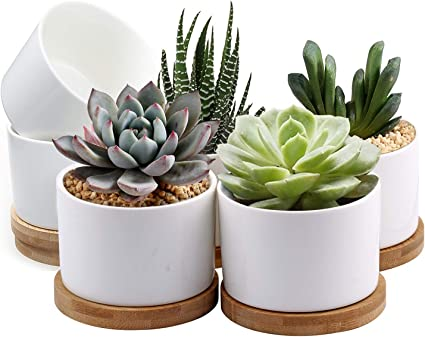 Succulent Pots Zoutog White Mini 3 15 Inch Ceramic Flower Planter Pot With Bamboo Tray Pack Of 6 Plants Not Included Kitchen Dining