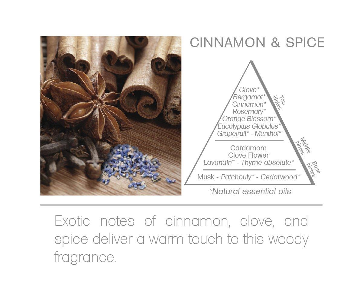 Acqua Aroma Everyday Collection Cinnamon & Spice Reed Diffuser 8.1 FL OZ (240ml) by Acqua Aroma (Image #6)
