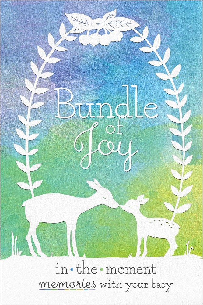 Bundle Joy Moment Memories Moments product image