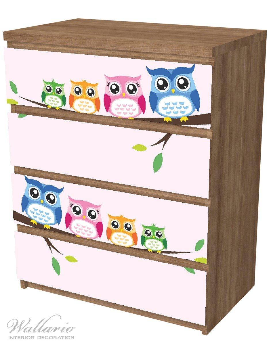 geeignet f/ür IKEA Malm Kommode Comic Stil mit 4 Schubf/ächern Wallario M/öbelfolie//Aufkleber Eulenfamilie auf Einem AST