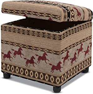Jennifer Taylor Home Jacob Storage Ottoman, Multicolored