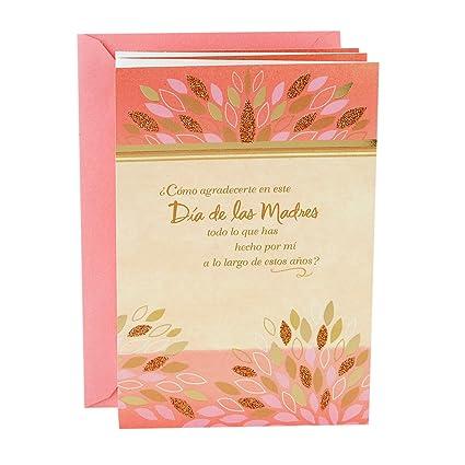 Amazon Hallmark Vida Spanish Mothers Day Greeting Card How